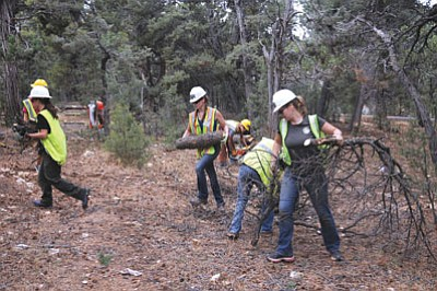 Grand Canyon National Park volunteers clear debris inside the park. Todd Nelson/NPS<br /><br /><!-- 1upcrlf2 --><br /><br /><!-- 1upcrlf2 -->