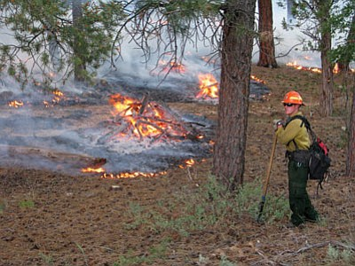 A Park Service fire manager watches over a controlled burn at Market Place Plaza. Controlled burns are part of efforts to mimimize the risk of wild fires. NPS Photo/Michael Quinn
