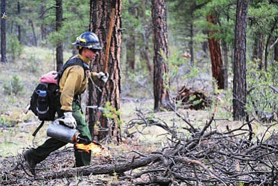 A firefighter manages the McRae fire 5 miles outside of Tusayan. USFS/Holly Krakee
