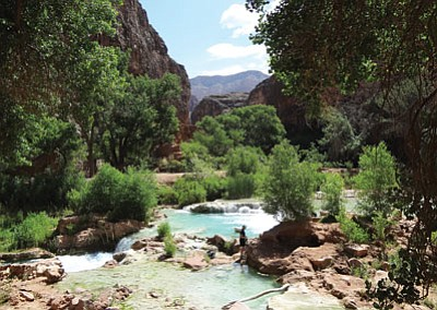Visitors from around the world hike to Havasupai Falls to swim and enjoy the turquoise waters. Loretta Yerian/WGCN