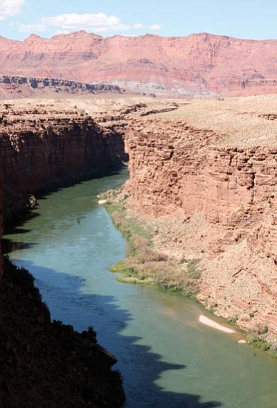 A portion of the Colorado River between Glen Canyon Dam and Lees Ferry. Loretta Yerian/WGCN