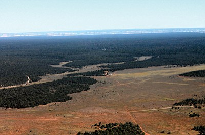 A portion of the Kaibab National Forest looking toward the Grand Canyon and Tusayan. Loretta Yerian/WGCN