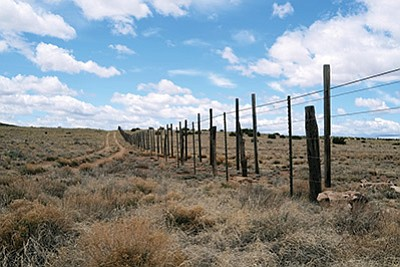 A wildlife friendly bison fence is being constructed at Raymond Wildlife Area. The specific spacing of the stay posts keep the bison away from the fence. Loretta Yerian/WGCN