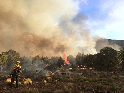 The lightning caused Bert Fire continues to be active and is being allowed to burn naturally to improve forest health. Photo/USFS, Kaibab National Forest