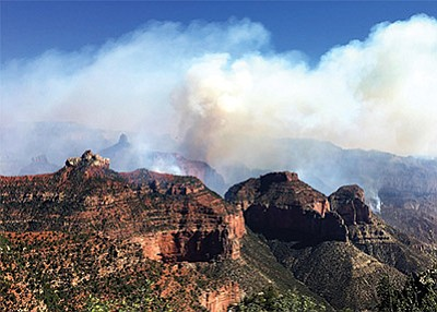 Mop up continues for the Fuller Fire on the North Rim of Grand Canyon after high humidity and rain helped firefighting efforts July 21. Photo/USFS,
