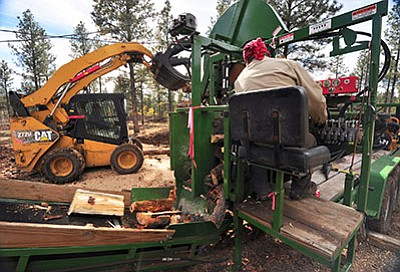 Forest restoration work completed as part of the partnership between the Alamo Band of Navajo Nation and the Kaibab National Forest. Photo/Dyan Bone, Kaibab National Forest
