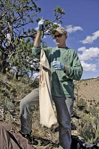 Biologist Eric York, 37, works in the field. Officials believe he died of plague contracted from a mountain lion carcass.