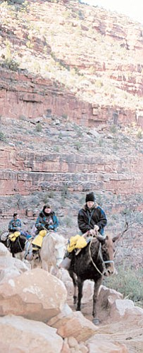 <br>Photo/WGCN<br> A National Park Service preferred alternative would change the number of rides into the Grand Canyon at the South Rim, but add more mule operations along the edge of the Canyon.