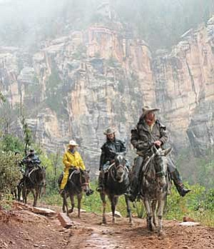 Photo/Mike Quinn<br> A mule train heads out of Grand Canyon. Rides below the rim will be limited with the approval Jan. 5 of a new stock use plan.