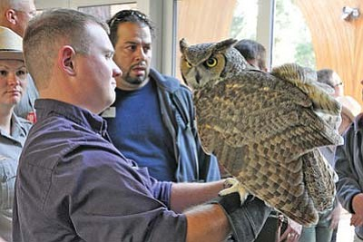 Erin Whittaker/NPS<br> Visitors at the park's 2011 Celebrate Wildlife Day get a close look at a great horned owl.