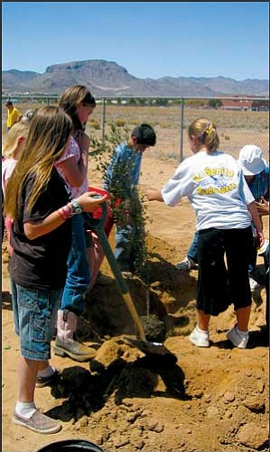 Fifth-graders at La Senita Elementary School plant 10 trees along the fence last Friday in celebration of Arbor Day. Members of the Kingman Master Gardeners helped the students place and plant the trees. JENNIFER BARTLETT/Miner
