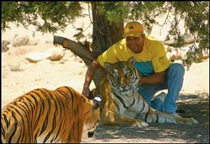 Jonathan Kraft, pictured with two of his tigers last fall at the new facility, is the founder and director of Keepers of the Wild. The non-profit animal park and sanctuary located north of Kingman is now open and features a special one-month reduced rate for Mohave County residents. JC AMBERLYN/Miner