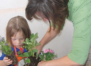 TERRY ORGAN/Miner<br><br> Kingman Academy of Learner preschooler MacKenzie Cathey prepares to add another plant once classroom assistant Lori Snow tamps down soil in the hanging basket each p.m. preschool child made Monday. Children in a.m. preschool classes are to make hanging baskets Wednesday.