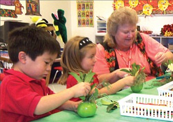 Courtesy<br><br> KAOL Primary School students Robert Scott Brackett and Marcie Wilson in Carrie Garfield's morning pre-school class concentrate on making the apple flower pots under the direction of Cerbat Garden Club volunteer Susan Jones.