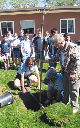 Aaron Royster/Miner<br><br> Cerbat Garden Club members (left to right) Lynda Goldberg, Sandie Womack and Virginia Hunter plant a tree at Manzanita Elementary on Earth Day while fifth-grade students look on.