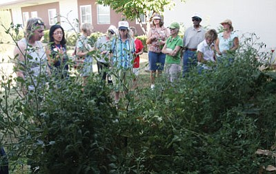 JC AMBERLYN/Miner<br /><br /><!-- 1upcrlf2 -->Nina Brackett of the Mohave Cooperative Extension Office (second from left) talks to master gardeners about gardening in schools Tuesday at the Manzanita Elementary School garden.
