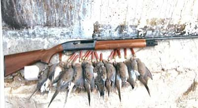 Don Martin/ Courtesy<br /><br /><!-- 1upcrlf2 -->Mourning doves that outdoor writer Don Martin bagged using the special 410 shotshell ammo that was loaded by Polywad Inc.