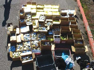 MCSO/Courtesy<br> Local authorities seized 1,700 pounds of marijuana-laced chocolates in December.