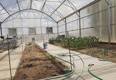 AHRON SHERMAN/Miner<br /><br /><!-- 1upcrlf2 -->Here is Kingman High's greenhouse, which will be used by an agricultural sciences CTE program, and will undergo an extensive remodel over the summer.