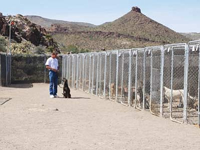 JC AMBERLYN/Miner<br> The Luv of Paws Rescue and Sanctuary is pictured during a 2010 Open House at its facility in Golden Valley.