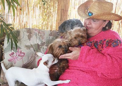 JC AMBERLYN/Miner<br> Susan Piccinino sits on her front porch Thursday with (from left) Pearlie, Snickers and Champ.