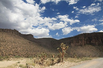 The road to Grand Canyon West, shown here in a July 2010 photo, winds through iconic southwestern landscapes.<BR>JC AMBERLYN/Miner