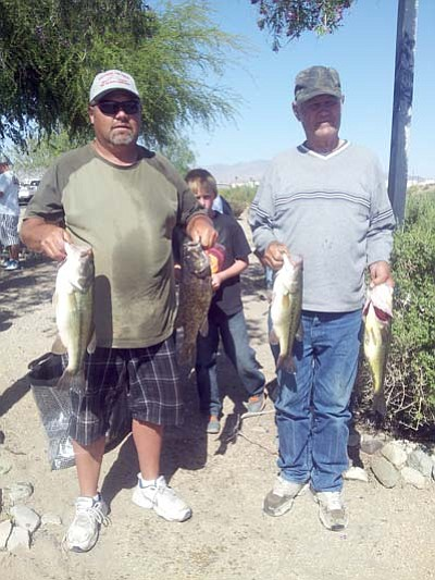Kingman residents Donnie Scroggins, left, and his father,  Ray, show some of the bass they weighed in at the Kingman Bass Club tournament on Lake Havasu. <BR>Special to the Miner