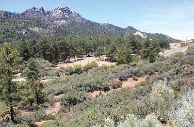 JC AMBERLYN/Miner<br /><br /><!-- 1upcrlf2 -->Hualapai Mountain Park is one of three local campgrounds included in a list of the state's best camping areas.