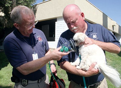 JC AMBERLYN/Miner<BR> Fire Prevention Specialist Mac Nelson (left) and Battalion Chief Bill Johnston, both of the Kingman Fire Department, demonstrate the use of FIDO equipment with a reluctant participant. Gracie, a Havanese dog, was all about not letting her muzzle get put inside the contraption. In an emergency situation, the dog's muzzle would be inserted into the cone-like part of the mask near her face.