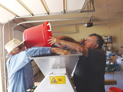 Cella Wines owner Carlos Cella and his friend and neighbor Dick Heesch  dump grapes into a machine that removes stems. (Courtesy)