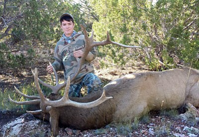 Courtesy<BR> Hunter Allen of Kingman shows the 7X7 bull he took on opening day of the 2014 general elk hunt in Unit 18A. Hunter had one of only 25 tags that were issued.