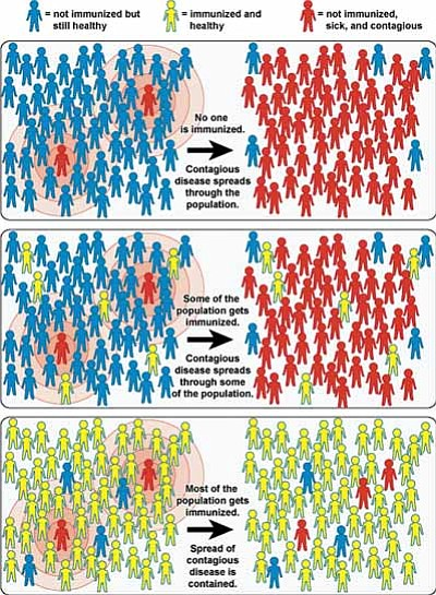 "A graphic depicting the concept of community,or ""herd,"" immunity. (NIAID/Courtesy)<br /><br /><!-- 1upcrlf2 -->"