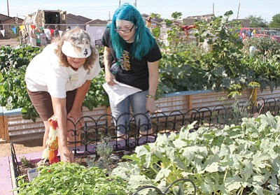 Cindy Toepfer (left), a master gardener, points out various plants to Amy Register, who was planning on leasing a plot in the garden. (JC AMBERLYN/Miner)