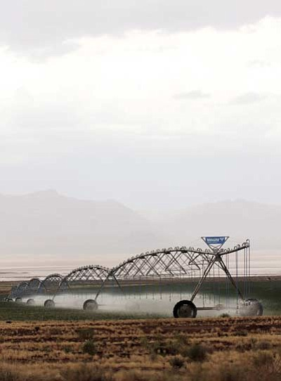 Kingman Farms north of Kingman photographed off Stockton Hill Road Thursday during a monsoon rain. (JC AMBERLYN/Miner)