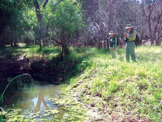 Joanne Oellers and Walt Anderson inspect a section of the Verde River. <br /><br /><!-- 1upcrlf2 -->