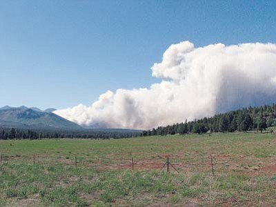 <i>Photo by Lynda Duffy</i><br> A view of the Schultz Fire taken about 4 p.m. Sunday, June 20 on Walnut Canyon Road east of Flagstaff.