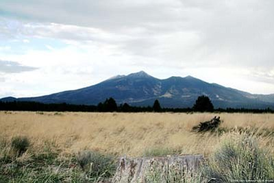 """<i>Photo by Calvin Johnson</i><br> The sacred San Francisco Peaks is known by many other names. To the Navajo, it's Dook'o'ooslid (""""The Place Where the Snow Never Melts"""") while the Hopi call the Peaks Nuvatukya'ovi (""""The Place of Snow on the Very Top""""). Other tribal names include Tsii Bina (""""Protection Shrine,"""" Acoma), Dzil Tso (""""Big Mountain,"""" Apache), Wikagana pa'dja (""""Snowy Mountain,"""" Havasupai), Wik' hanbaja (""""Snowy Mountain,"""" Hualapai), Wimonogaw'a (""""Cold Mountain,"""" Yavapai), and Sunha:kwin K'yaba:chu Yalanne (""""Mountain with the Volcanic Water Caches,"""" Zuni Pueblo)."""
