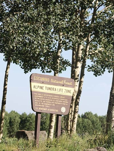 Photo Stan Bindell/NHO<br> The entrance sign stands out among the aspens.