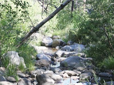 Stan Bindell/NHO<br> One of many beautiful creeks that can be found along the trail, well worth the long hike.