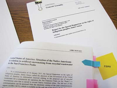 Submitted photo<br> The United Nations Special Rapporteur on the Rights of Indigenous Peoples S. James Anaya's report to the U.N. Human Rights Council was released on Aug. 22 with recommendations, one of which is for the United States to suspend the U.S. Forest Service permit.