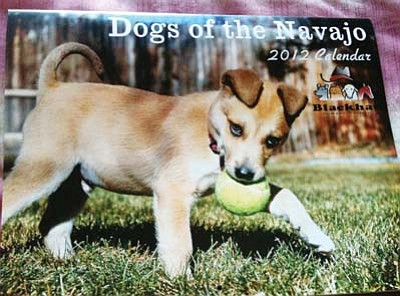 """Rosanda Suetopka Thayer/NHO<br> BlackHat Humane Society (BHHS), based out of Chinle, Ariz., is selling their annual """"Dogs of the Navajo"""" 2012 calendar for $15 including shipping. The BHHS is celebrating its 10th year of stray animal adoption services to the Navajo Reservation and the calendar sales are their biggest fundraiser."""