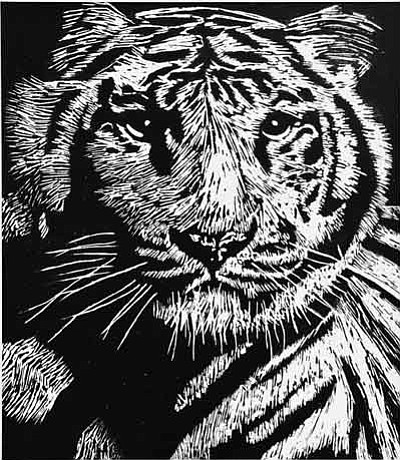 """Tiger,"" black scratch medium, Weston Morris, 11th grade. Photo/Todd Roth"