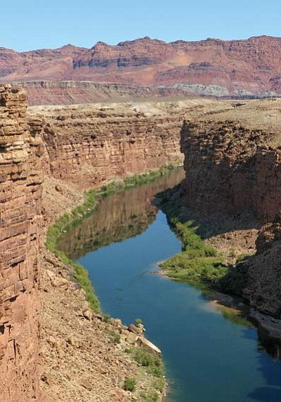 View north from Navajo Bridge of the Colorado River, looking in the direction of Lees Ferry, four miles upriver. Mike Quinn/NPS