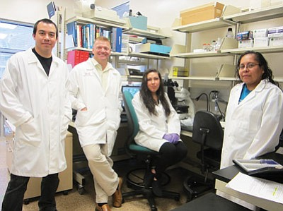 Pictured from left: Adam Bradley, Aaron Tabor, Brittney Hornsby and Eleanor Miller take a break from their reserach in the NACET lab. Katherine Locke/NHO