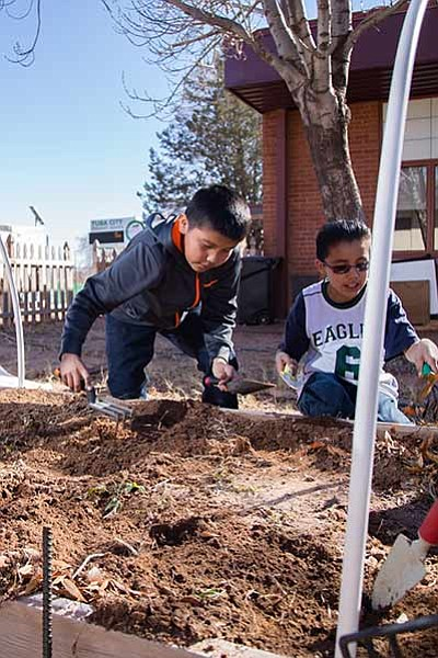 Ayden Carr and Keyon Jensen rake the soil to get it ready for planting pea seeds Feb. 9 at Tuba City Primary School's garden. The kids completed a lesson on soil prior to getting the soil ready for planting.