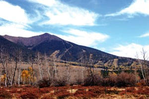 A seldom seen view of the sacred San Francisco Peaks revealing how nature's beauty is scarred by downhill ski runs (Photo by Rebecca Schubert/NHO).