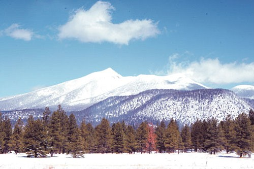 <i>Photo by Jeff Brostrum</i><br> The San Francisco Peaks, seen in this undated photo, are held sacred by more than 13 Native American tribes. On Aug. 8, the Ninth Circuit Court of Appeals in Pasadena, Calif. ruled against the tribes, thereby giving permission to the U.S. Forest Service and the Arizona Snowbowl ski resort to commence with plans for the eventual use of reclaimed wastewater to make artificial snow for skiiing on the sacred mountain.