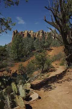 The Jordan and Cibola Pass Trail Loop is a vivid and colorful hike. Photo by Cheryl Hartz
