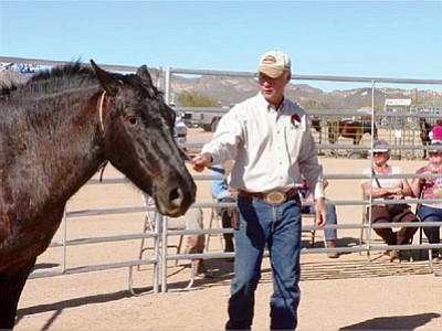 Randy Helm shows potential wild horse and burro owners how to gently train a horse.<br> Courtesy of BLM