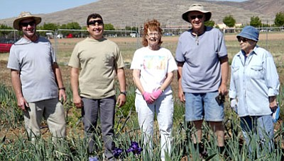 Courtesy Photo<br /><br /><!-- 1upcrlf2 -->Getting ready to plant this year's garden are garden volunteers, from left, Dave Sawyer, Ramon Ortega, Jann Kemp, Dave Gruenhagen and Frances Jordan standing amongst the 800 garlic plants already growing.